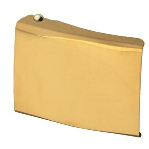 Koppelschloß FHB 87100 neutral gold